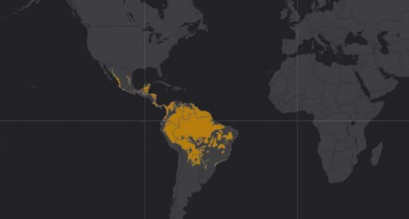 Mapa de rango geográfico para el Jaguar