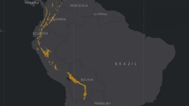 Mapa de rango geográfico para el Oso de Anteojos
