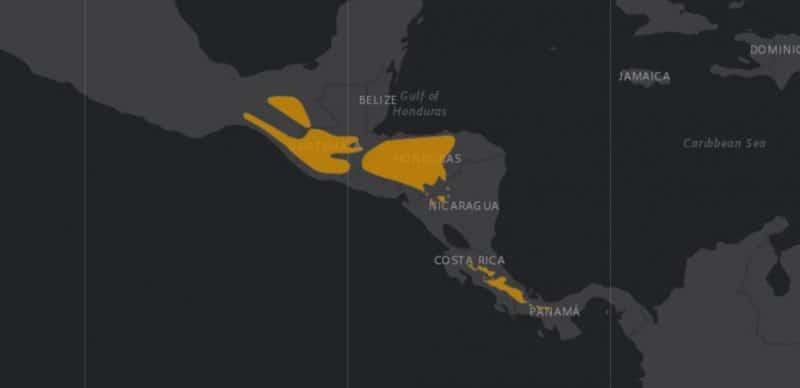 Mapa de rango geográfico para el Quetzal