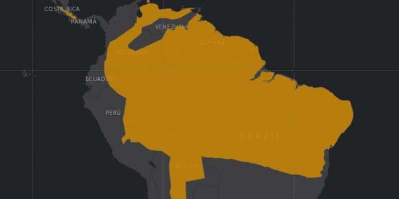 Mapa de rango geográfico para el Tigrillo