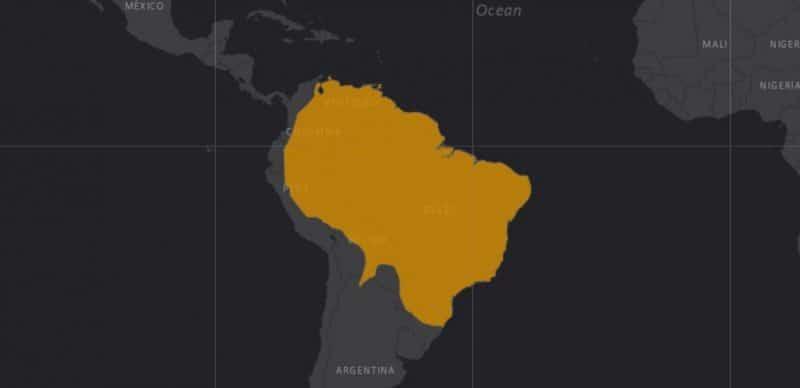 Mapa de rango geográfico para el Coendú