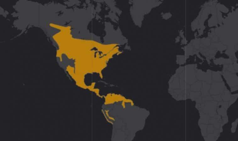 Mapa de rango geográfico para el Venado de cola blanca