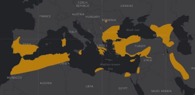 Mapa de rango geográfico para el Murciélago de herradura de Mehely