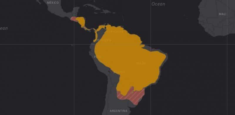 Mapa de rango geográfico para el Oso Hormiguero Gigante